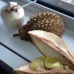 eva simons gezond kokos womenon